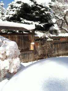 Bee Block in Snow 1